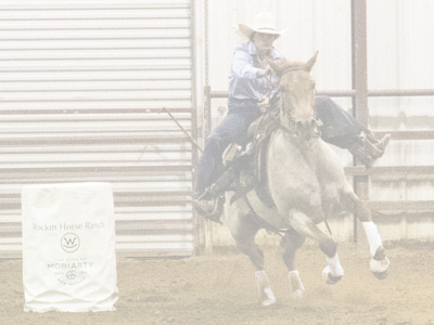 Barrel Racing Rider Home Stretch